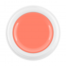 Limited Winter Edition 2018 Color Gel light salmon